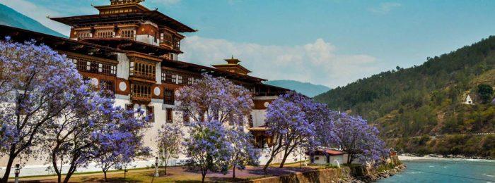 Фото и видеооператор в Бутан