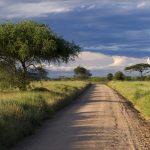 Фото и видеооператор в Танзанию