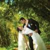 Картинка к записи Стоимость съемки свадьбы