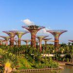 Фото и видеооператор в Сингапур