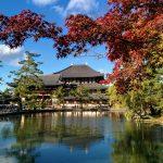 Фото и видеооператор в Японию